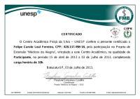 Felipe Carolo Leal Ferreira.pdf