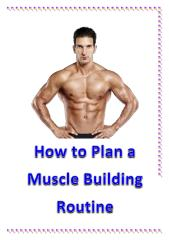 How to Plan a Muscle Building Routine.pdf